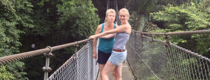 Arenal Hanging Bridges is one of Tempat yang Disukai SKW.