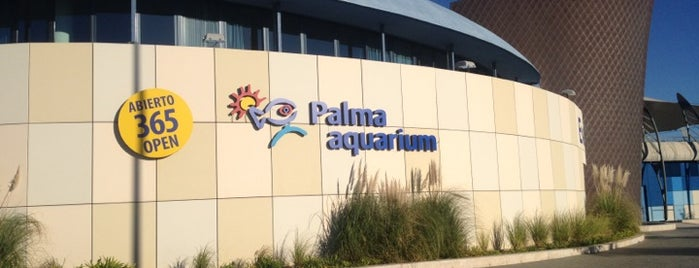 Palma Aquarium is one of Palma.