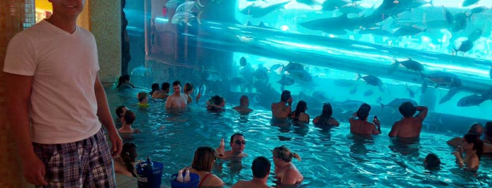 Golden Nugget Pool is one of Roadtrip.