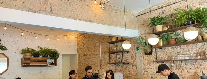 Manglar - Cocina Fresca is one of Carlos'un Beğendiği Mekanlar.