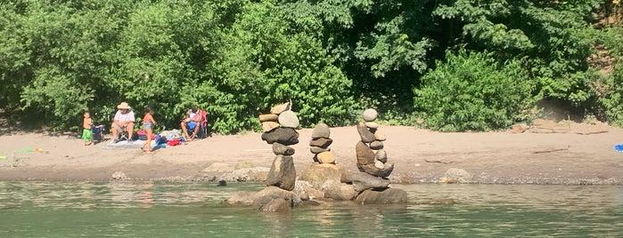 The Sandy River is one of Olivia : понравившиеся места.