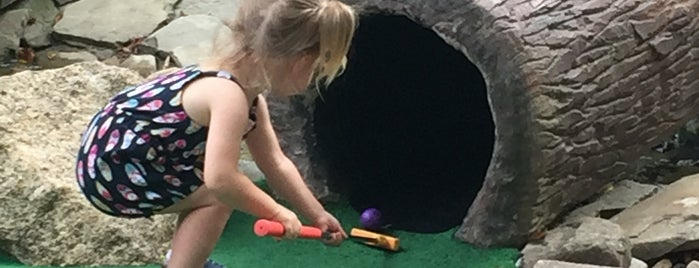 Arnold's Adventure Mini Golf is one of Cape.
