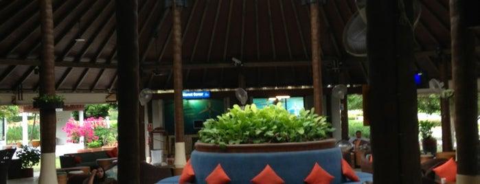 Samui International Airport (USM) is one of Koh Samui's Delights.