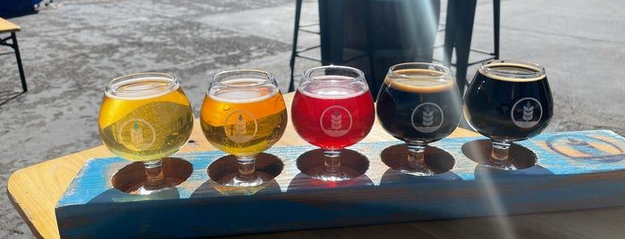 Pure Project Brewing is one of Craft Breweries.