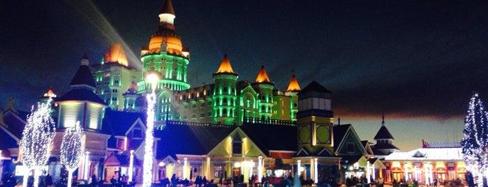Парк развлечений «Сочи парк» is one of Свадебное путешествие.