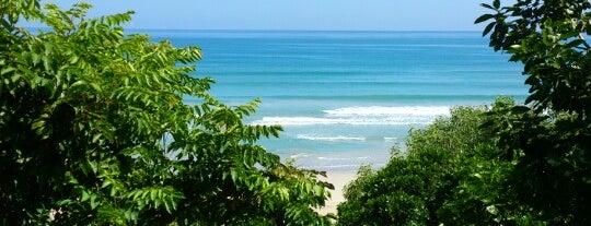 Wild Beach Resort is one of Locais curtidos por Alyonka.