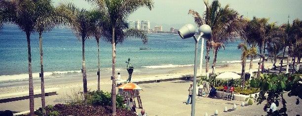 Wings Army is one of Sports Bar en Puerto Vallarta.