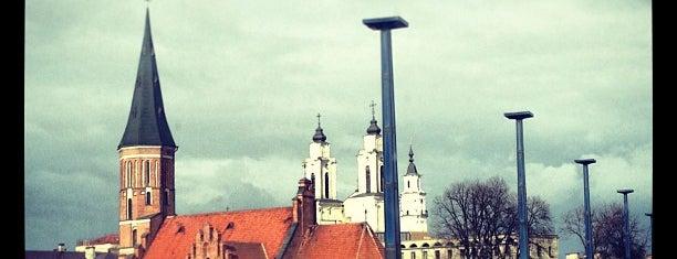 Kaunas is one of Tempat yang Disukai Денис.
