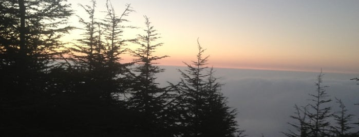 Falougha is one of Lebanon 🇱🇧.