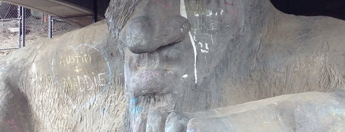 The Fremont Troll is one of Seattle Interns: Places.