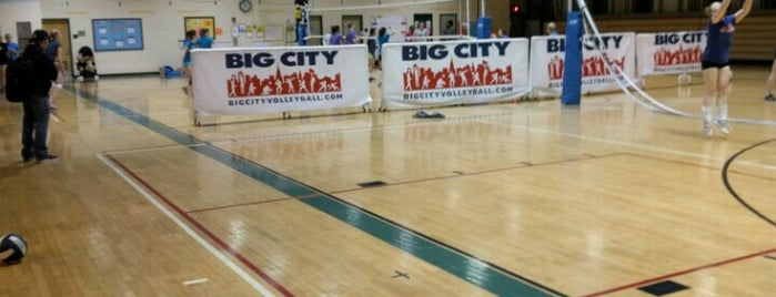 Big City Volleyball is one of Posti che sono piaciuti a Mark.