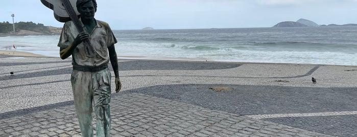 Estátua de Tom Jobim is one of Río.