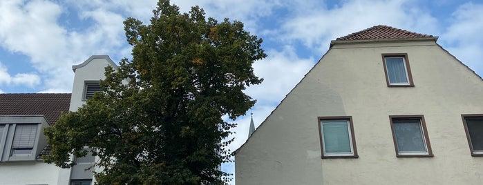 Osnabrück is one of Robert : понравившиеся места.