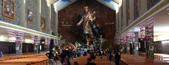 Basílica de la Inmaculada Concepción is one of Lugares favoritos de Daniel.