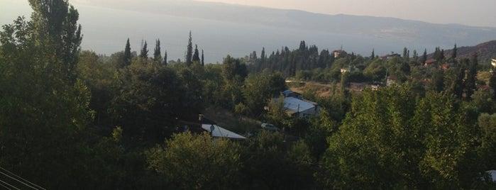 Çamçukur Köyü is one of สถานที่ที่ Nurdan ถูกใจ.