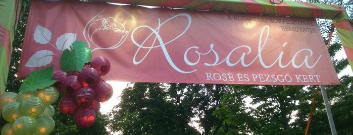 Rosalia Festival I Rosalia Fesztivál is one of Budapest.