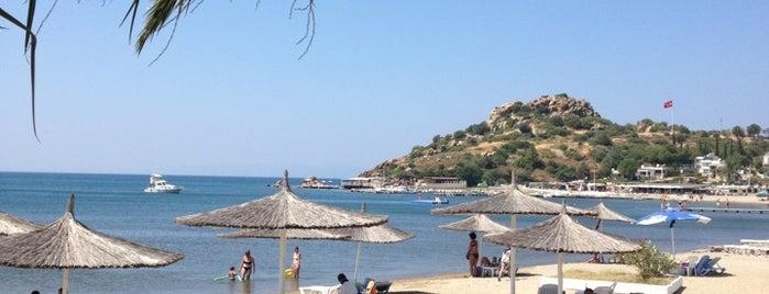 Güvercin Koyu Havuz Cafe&Bar is one of Balıkesir Plajları.