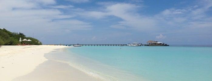 Anantara Kihavah Villas - Maldives is one of Maldives - The Sunny Side of Life.