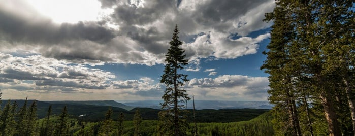 Grand Mesa National Forest is one of National Recreation Areas.