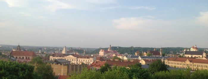 Panorama Hotel Vilnius is one of 海外.