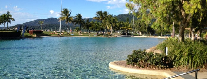 Airlie Beach Lagoon is one of Andreas : понравившиеся места.