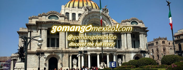 Go Man Go! Mexico Tours is one of Go Man Go Gay Mexico City.