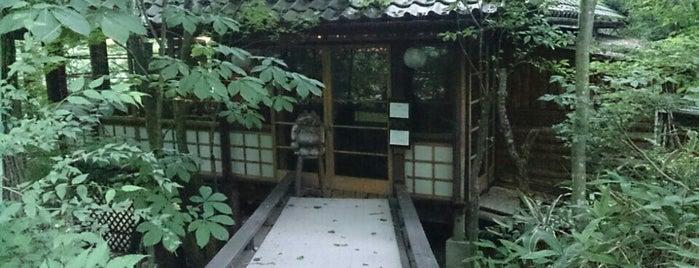 ばおばぶ is one of สถานที่ที่ papecco2017 ถูกใจ.