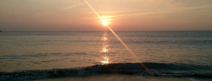 今井浜海岸 is one of papecco2017さんのお気に入りスポット.