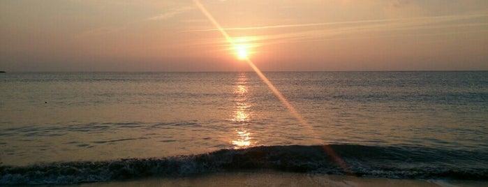 今井浜海岸 is one of Orte, die papecco2017 gefallen.