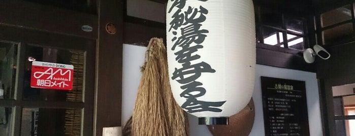 蛇の湯温泉 たから荘 is one of Locais curtidos por papecco2017.