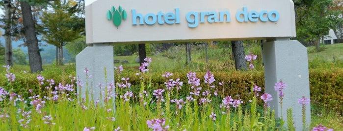 Hotel Grandeco is one of Locais curtidos por papecco2017.