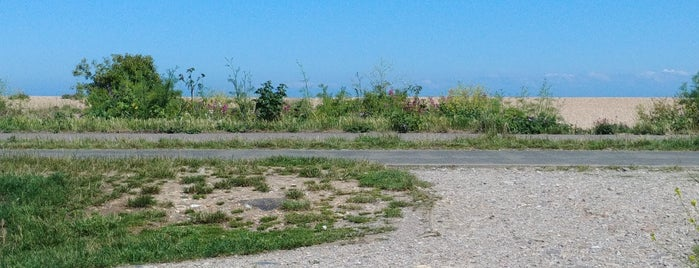 Walmer Beach is one of Orte, die Carl gefallen.