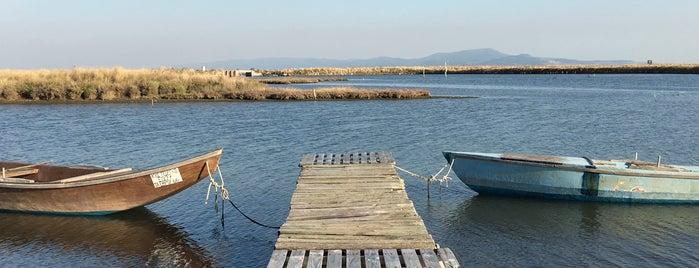 Δελτα Εβρου Αλεξανδρουπολη is one of Lugares favoritos de Lina.