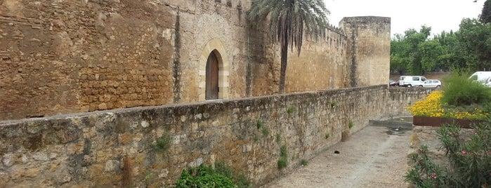 Puerta de Sevilla is one of Cordoba.
