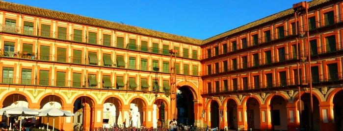 Plaza de la Corredera is one of Que visitar en Cordoba.