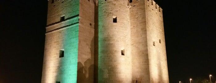 Torre de la Calahorra is one of Que visitar en Cordoba.