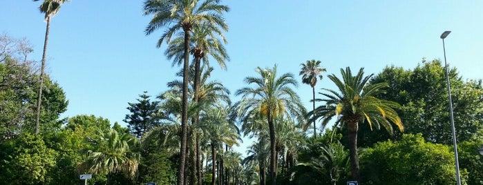 Jardines de la Victoria is one of Córdoba.