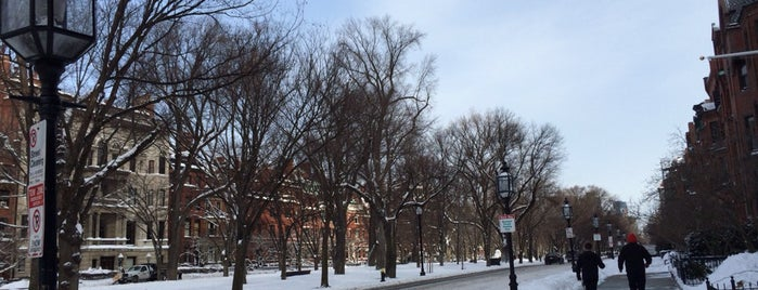 Buckingham boston apartments is one of Tempat yang Disimpan Taner.