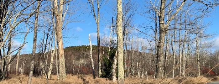Wild Gardens of Acadia is one of Tempat yang Disukai James John (Jay).