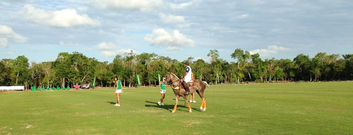 El Rey - Polo Country Club is one of Locais curtidos por Felipe.