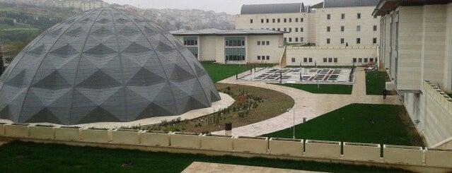 Osmanlı Arşivi Daire Başkanlığı is one of Lugares favoritos de Alper T..