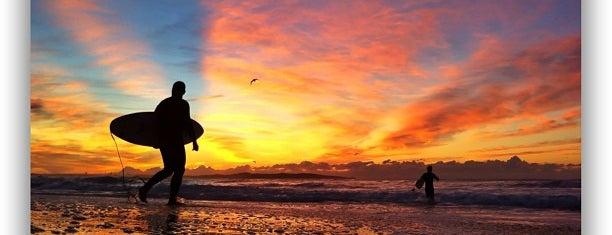 Elouera Beach is one of Surfing spots.