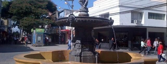 Calçadão da Andrade Neves is one of สถานที่ที่ Adonai ถูกใจ.