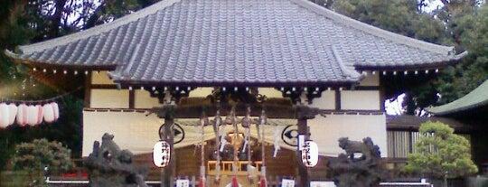 平塚神社 is one of 神輿で訪れた場所-1.