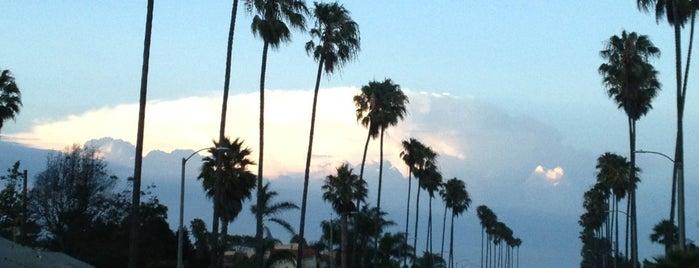 California Memories 🌴☀️🏄🇺🇸