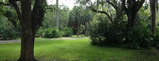 Matheson Hammock Park is one of Miami: history, culture, and outdoors.