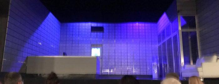 Teatr Ateneum is one of faenza.