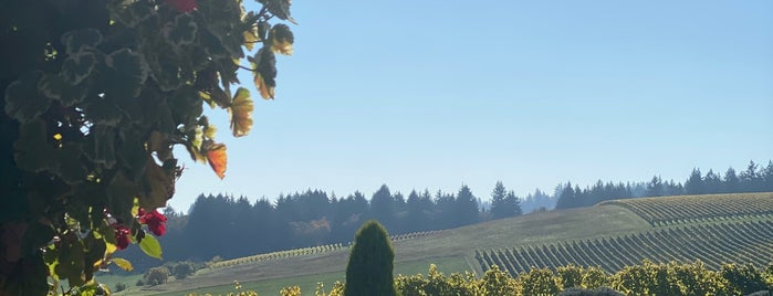 Methven Family Vineyards is one of Wineries in Willamette Valley.