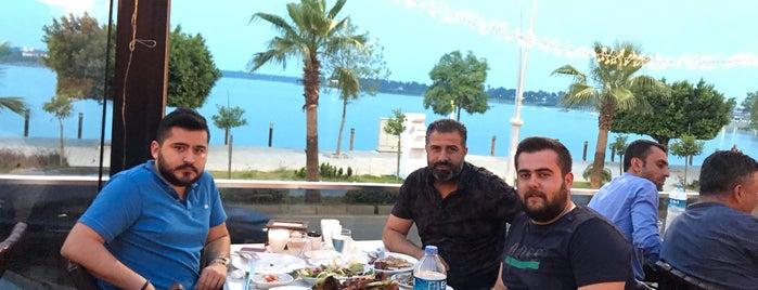 Hadırlı Restaurant & Kuruçeşme Nargile Cafe is one of Adana.