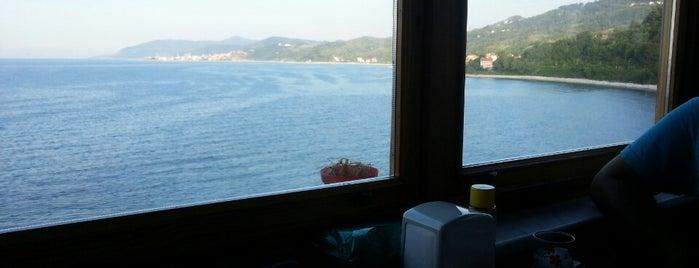 Güllüsu Deniz Aile Balık Lokantası is one of orta karadeniz.